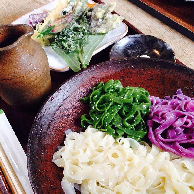 きしめん / Kishimen Noodles